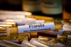 Propolis-Globuli
